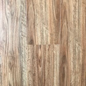 3007 Spotted Gum